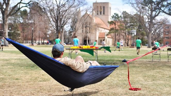 My Student Government Platform: More Hammocks